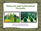 Natural and Cultivated Forests Nonfiction Close Reading Passage