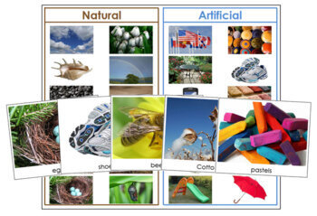 Natural or Artificial: Sorting Cards & Chart