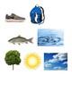 Natural vs. Man-Made Activity