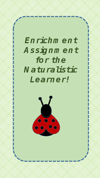 Naturalistic Learner - Project
