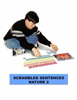 Nature 2 Scrambled Sentences Manipulatives