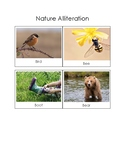 Nature Alliteration Cards: TS GOLD 15b