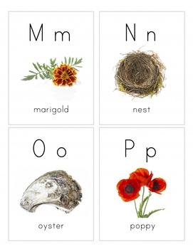 Nature Alphabet- Naturalist Montessori Alphabet