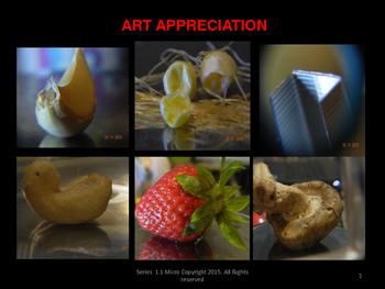 Nature Art Appreciation