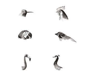 Nature Art Prompts: Create a Bird Pack