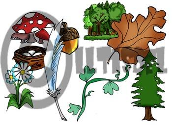 Nature Clip-Art: 9 B&W, 9 Color