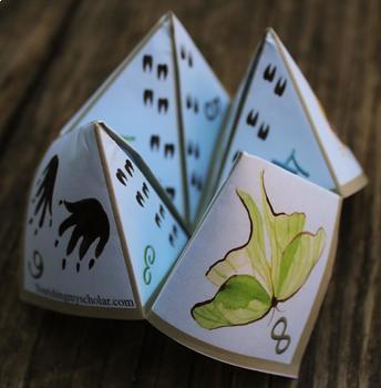 Nature Game Cootie Catcher