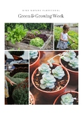 Nature PlaySchool Green & Growing Theme