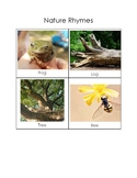 Nature Rhyming Cards: TS GOLD 15a