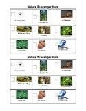 Nature Scavenger Hunt 1