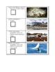 Nature Scavenger Hunt and Worksheet, Animal Adaptations, H