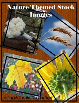 Nature Stock Photo Bundle