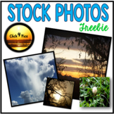Nature Stock Photo FREEBIES