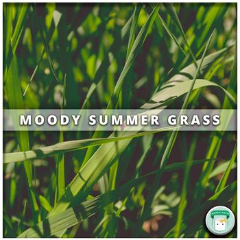 Nature Stock Photo Moody Summer Grass