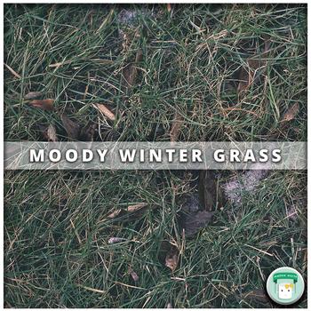 Nature Stock Photo Moody Winter Grass
