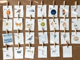 Nature Themed Alphabet Cards | Alphabet Cards | Charlotte