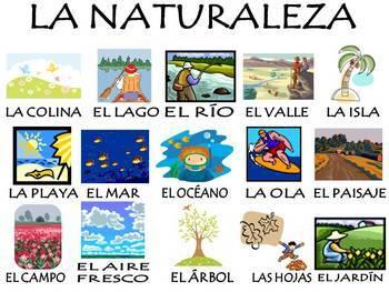 Nature Vocabulary Activities & Games Unit in Spanish / La Naturaleza