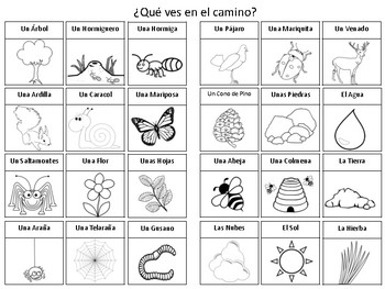 Nature Walk Activity for Spanish Students!