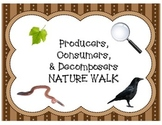 Nature Walk- Producer, Consumer, and Decomposers Organizer