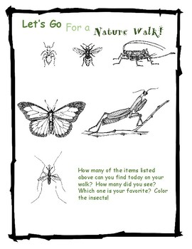 Nature Walk with Insects