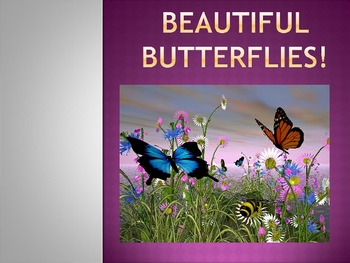 Nature and Butterflies