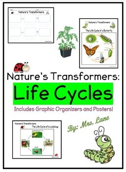 Nature's Transformers: Life Cycles (Includes Graphic Organizers & Posters!)
