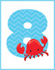 Nautical Numbers Flash Cards; Kindergarten; Preschool; Homeschool; Math