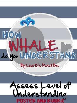 Nautical Themed Assess Level of Understanding