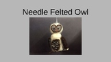 Needle Felted Owl Presentation with Video Link