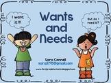 Needs and Wants: Do I Need It?  Do I Want It?