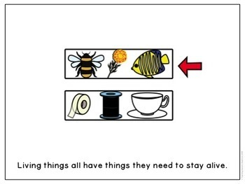Needs of Living Things (Australian Science Curriculum |Foundation)