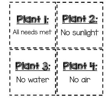 Needs of Plants Experiment Journal