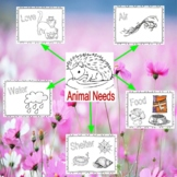 Needs of Plants and Animals & Interdependence - 5 Activities