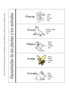 Needs of Plants and Animals & Interdependence - 5 Activities in Spanish