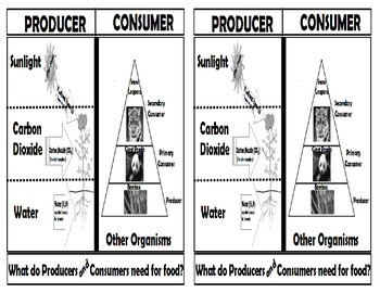 Needs of Producers and Consumers