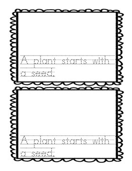 Needs of a Plant Mini Book