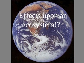 Negative Effects on the Ecosystem