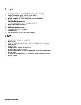 Nemertines and Nematodes Vocabulary Crossword for Invertebrate Biology