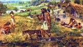 Neolithic (Agricultural) Revolution Cause and Effect Activity
