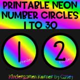 NEON Number Circles Mini Cutouts 1 to 30 Math Bulletin Board