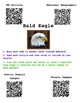 Nerdy Birdy Popplet/QR Code Research Project- Great for Subs Plans!
