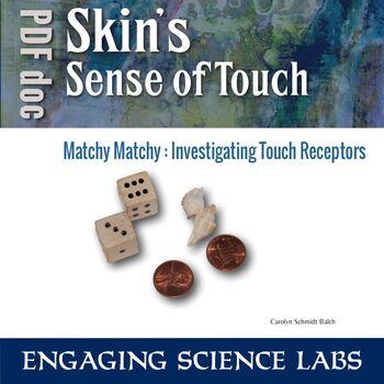 Nerves Study: Sense of Touch Investigation