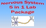Nervous System Lab Bundle Anatomy and Biology