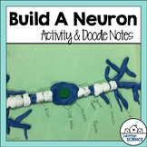 Nervous System: Build a Neuron Modeling Activity with Doodle Notes
