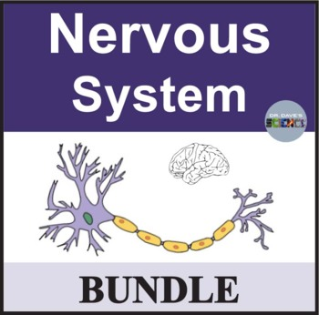 Nervous System Bundle