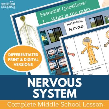 Nervous System Complete 5E Lesson Plan