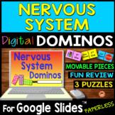 Nervous System DIGITAL DOMINOS for Google Slides
