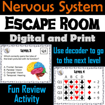 Nervous System Escape Room - Science: Anatomy (Human Body Activity)