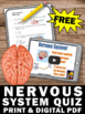 FREE Download Nervous System Activity, Human Body Systems Grade 5