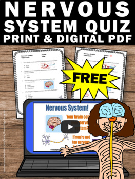 FREE Nervous Human Body Systems 5th Grade Science Distance ...